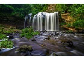 瀑布,瀑布,温室,壁纸,(4)图片