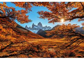 秋天,自然,风景,山,叶子,壁纸,