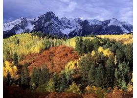 地球,风景,自然,森林,山,雪,壁纸,图片
