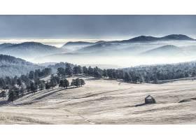 地球,风景,自然,森林,山,雾,壁纸,图片