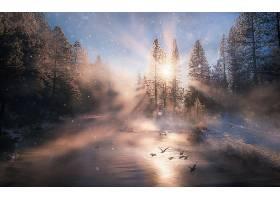 阳光,自然,河,降雪,冬天的,壁纸,图片