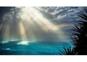 阳光,自然,海,壁纸,图片