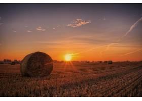 地球,领域,自然,夏天,干草堆,天空,太阳,日出,壁纸,