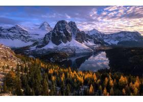 地球,风景,自然,森林,湖,山,壁纸,图片