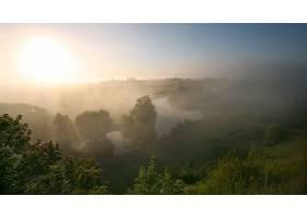 雾,树,水,壁纸,图片