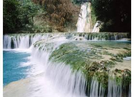 瀑布,瀑布,自然,墨西哥,苔藓,植物,水,壁纸,图片