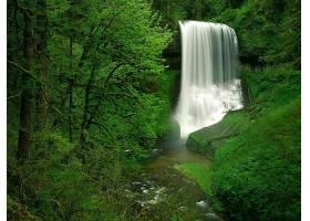 瀑布,瀑布,自然,绿色的,植物,壁纸,图片