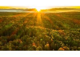 地球,风景,自然,森林,阳光,壁纸,(1)图片