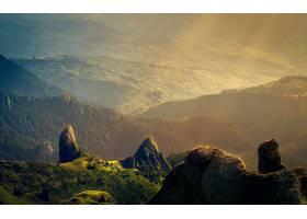 地球,风景,自然,森林,阳光,壁纸,图片
