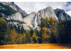 约塞米蒂国家公园,瀑布,瀑布,瀑布,树,秋天,自然,约塞米蒂国家公图片