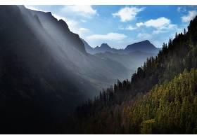 阳光,自然,风景,山,森林,壁纸,图片