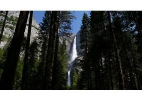 约塞米蒂国家公园,瀑布,瀑布,瀑布,森林,树,壁纸,图片