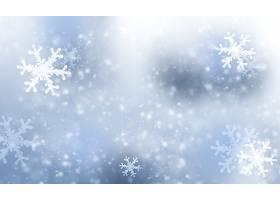 雪花,冬天的,雪,壁纸,图片