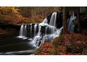 瀑布,瀑布,秋天,森林,岩石,壁纸,(4)图片