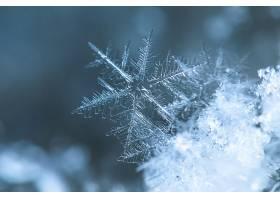 雪花,巨,壁纸,(2)图片