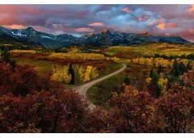 地球,风景,自然,秋天,森林,山,泥土,路,叶子,壁纸,图片