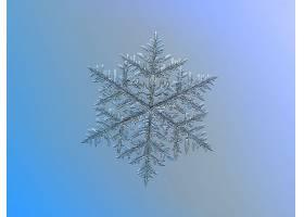 雪花,透明的,对称,巨,壁纸,图片