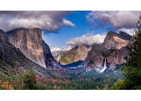 瀑布,瀑布,峡谷,森林,树,山,悬崖,约塞米蒂国家公园,国家的,公园,