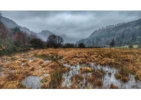 雾,山,爱尔兰,直接热轧制,壁纸,图片