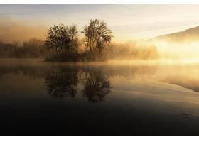 雾,湖,树,日出,岛,自然,反射,壁纸,图片