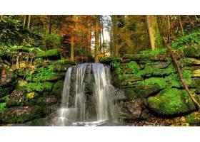 瀑布,瀑布,自然,苔藓,森林,水,植物,壁纸,图片