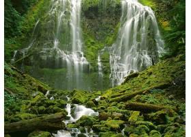瀑布,瀑布,自然,苔藓,植物,水,壁纸,图片