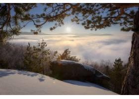 雾,自然,冬天的,壁纸,(1)图片