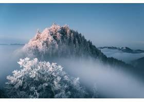 雾,自然,冬天的,壁纸,图片