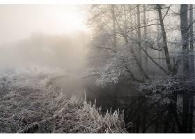雾,自然,冬天的,河,壁纸,图片