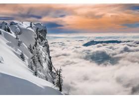 雾,自然,地平线,冬天的,雪,壁纸,图片