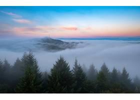雾,自然,地平线,天空,壁纸,(1)图片