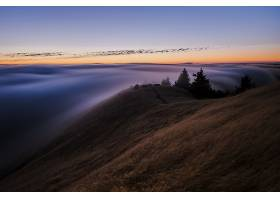 雾,自然,地平线,天空,壁纸,图片