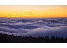 雾,自然,地平线,日出,壁纸,图片