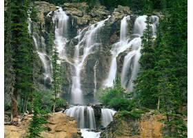 瀑布,瀑布,森林,岩石,壁纸,(4)图片