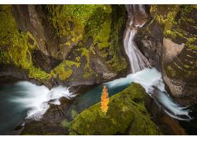 瀑布,瀑布,自然,岩石,壁纸,(9)图片