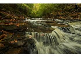 瀑布,瀑布,森林,岩石,溪流,绿色的,壁纸,图片