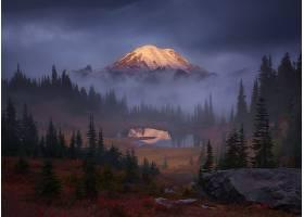 雾,自然,山,树,湖,壁纸,图片