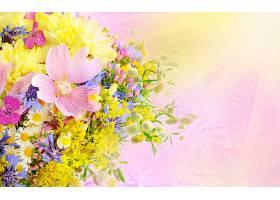 花,蜡笔,壁纸,(2)