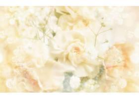 花,蜡笔,白色,花,壁纸,