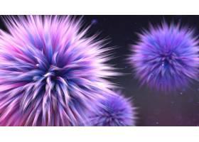 花,摘要,紫色,粉红色,壁纸,(1)