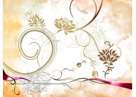 花,植物的,壁纸,(1)