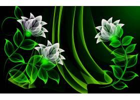 花,氖,摘要,壁纸,(1)