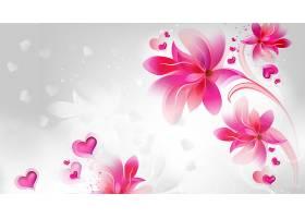花,紫色,花,壁纸,(1)