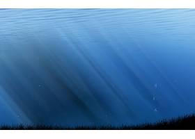 水,壁纸,(11)