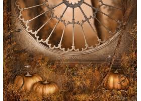 秋天,南瓜,壁纸,