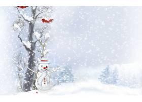 雪人,壁纸,(11)