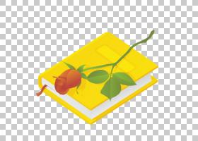 黄色封面的书本笔记本与玫瑰花