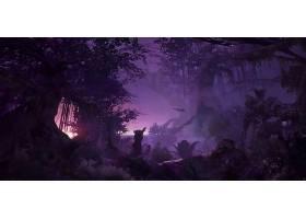 幻想,森林,夜晚,风景,树,壁纸,
