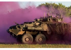 军队,装甲的,人事部门,带菌者,装甲的,战斗的,车辆,装甲的,人事部