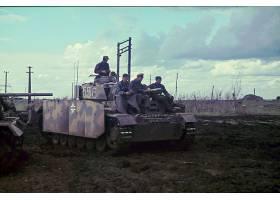 军队,装甲车,三,坦克,壁纸,(3)